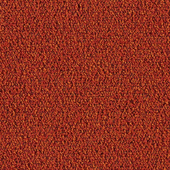 Boucle Two-Tone